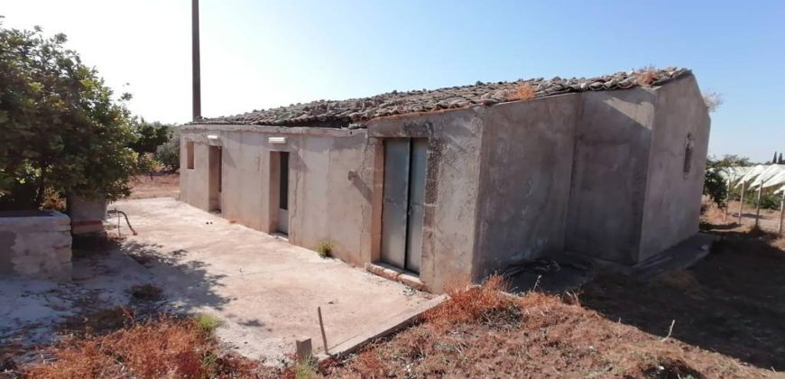 casa di campagna con uliveto