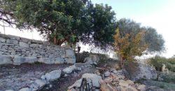 casa in pietra ristutturata